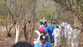 Peritos y familiares de desaparecidos buscan