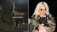 """""""Llamada cercana con la muerte"""": paseador de perros de Lady Gaga recuerda el aterrador incidente"""