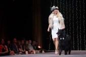 """El show de moda canino """"Mutts & Models"""" recauda fondos para mascotas que lo necesitan. El desfile de modas se realizará el 21 de mayo en el Denver Center for the..."""