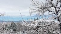 Una tormenta de nieve dejó hasta un pie de nieve en las montañas y cubrió de blanco las calles de Denver.