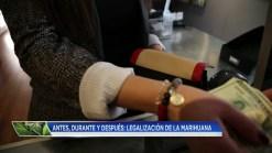 Colorado desarrolla modelo de legalización del cannabis