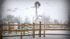 Tus fotos: Copos de nieve cubren calles de Colorado