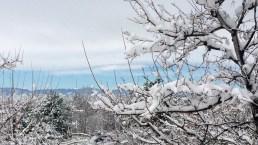 Tus fotos: Tormenta invernal cubre de blanco a Colorado