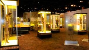 Visita los museos de Denver ¡de noche y gratis!