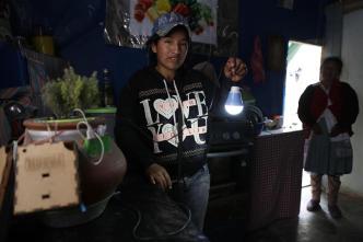 Insólito: plantita que da luz y hasta carga tu celular