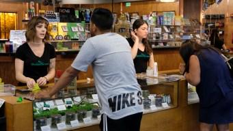 ¿Buscas empleo? ¿Que tal un trabajo en...marihuana?