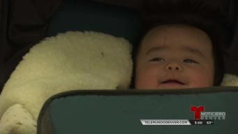 Asi se vivió el Día nacional de la Adopción en Denver