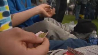 Consumo de marihuana aumenta en las escuelas del estado