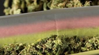 Marihuana de Colorado: Producto de exportación