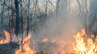 Incendio Goat Canyon arde cerca de la Ciudad de Nephi