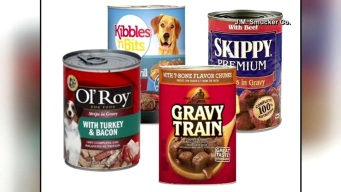 Encuentran peligroso fármaco en comida para perros