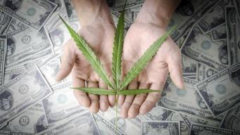 Ventas de marihuana en Colorado: $100 millones al mes