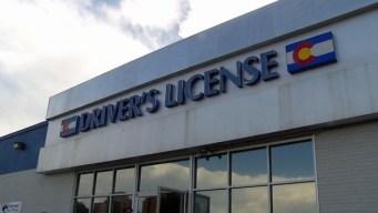 Licencias para inmigrantes