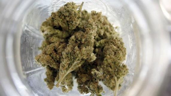 Marihuana en Colorado