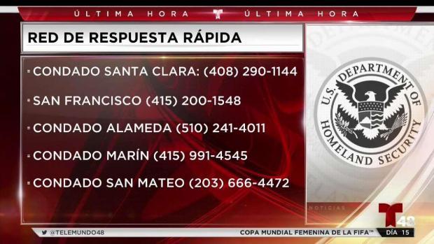 [TLMD - Bahia] Conoce tus derechos ante posibles redadas de ICE