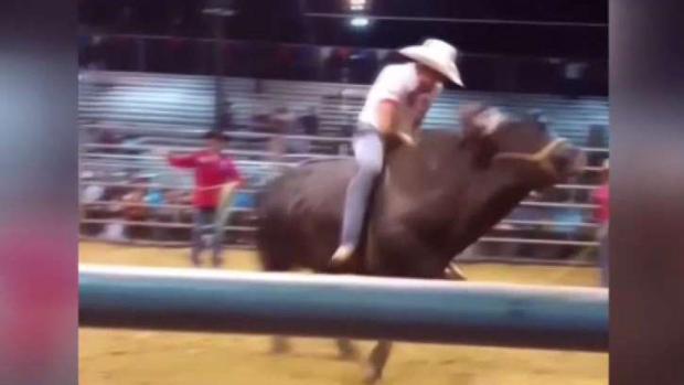 [TLMD - Dallas] Joven muere tras caer de un toro en Dallas