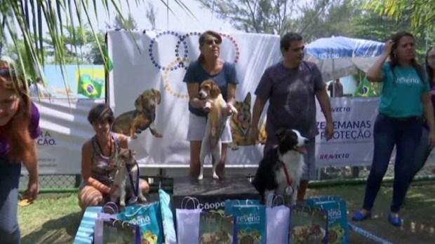[TLMD - MIA] Realizan primeros juegos olímpicos para perros