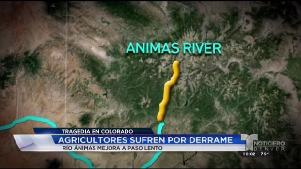 Río Animas mejora a paso lento