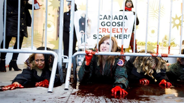 """""""Sangrienta"""" demostración pide el cese de uso de pieles"""