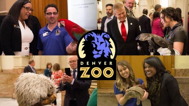 Del zoológico al capitolio estatal