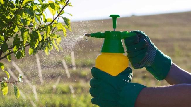 California prohibe uso de pesticida vinculado a daño cerebral