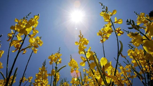 Día de temperaturas primaverales