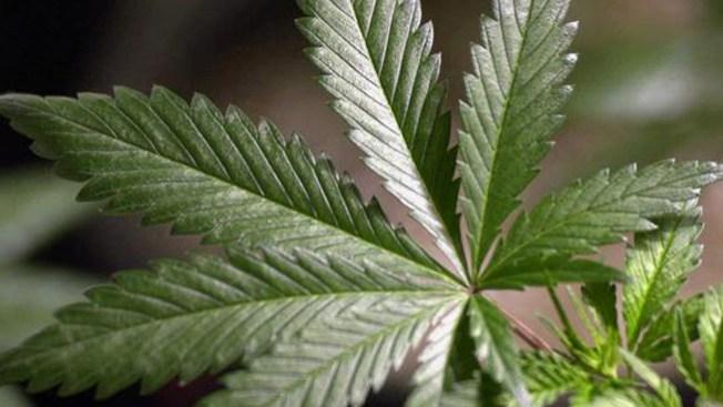 Nuevas reglas bancarias para marihuana