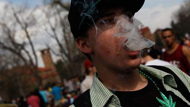 Resisten campaña contra la marihuana
