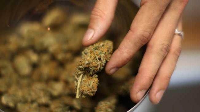 Crece consumo del cannabis en Denver