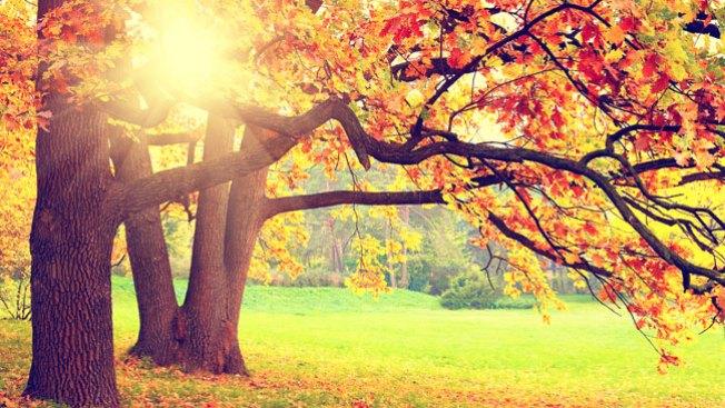 Colorado da la bienvenida al otoño