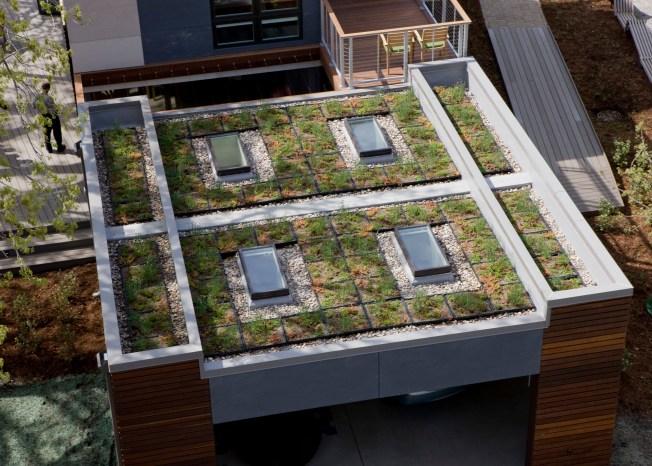 Denver decidirá en noviembre sobre  techos verdes