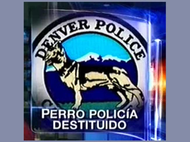 Perro policía destituido
