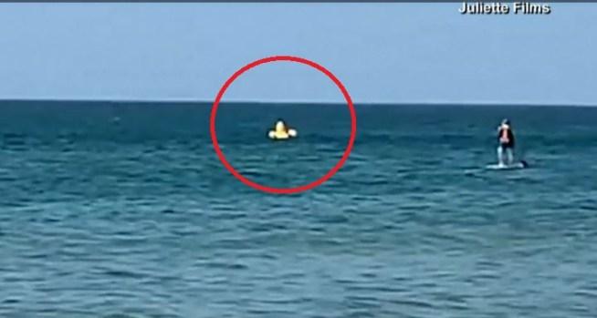 [TLMD - NATL] Pánico en día de playa: niño a la deriva cae de patito inflable
